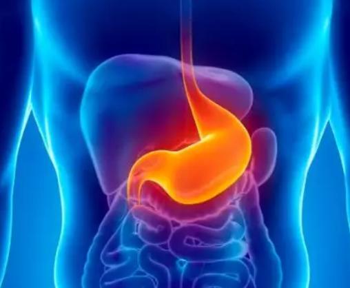 萎缩性胃炎伴肠化、HP+++,还能治愈吗?