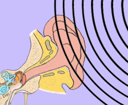 听力差的老人更易患老年痴呆症?