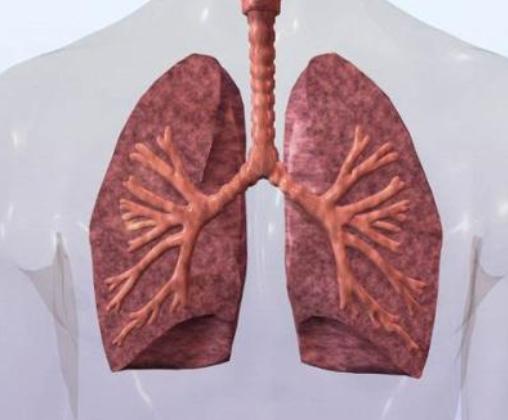 老年人为什么更易患上肺心病?