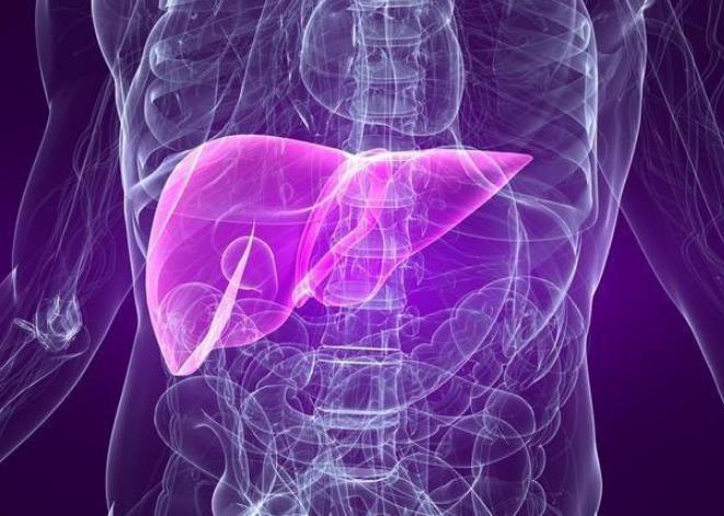 肝脏移植是一种复杂的手术,费用高且存在重大风险,但能提高存活率
